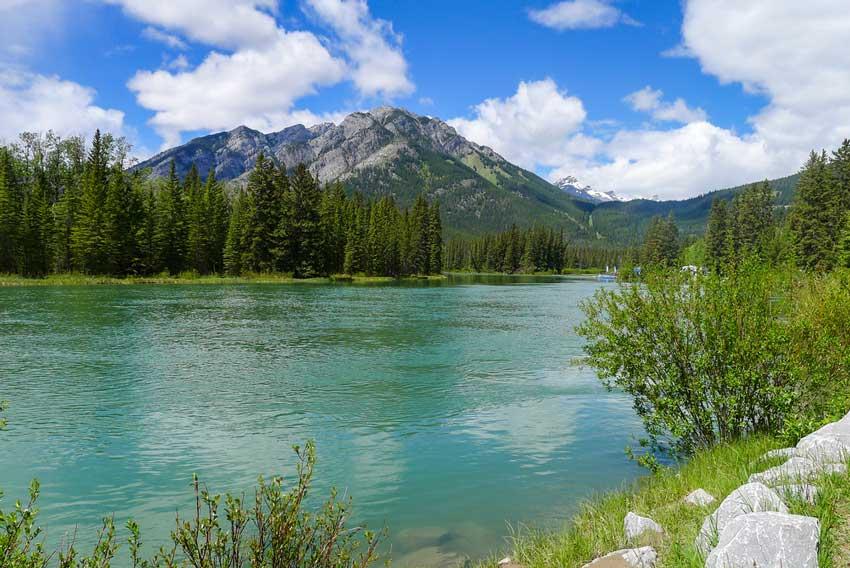 Summer fishing trip in Banff